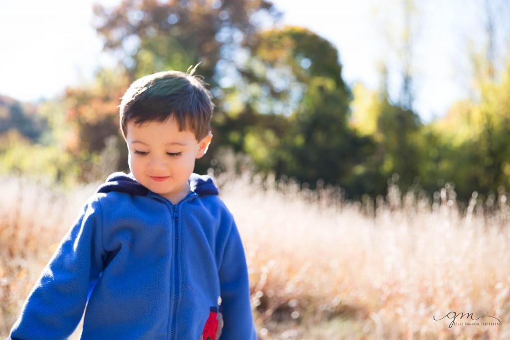 little boy in sunny field