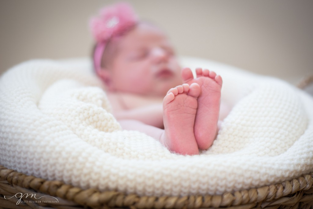 Westborough newborn photo