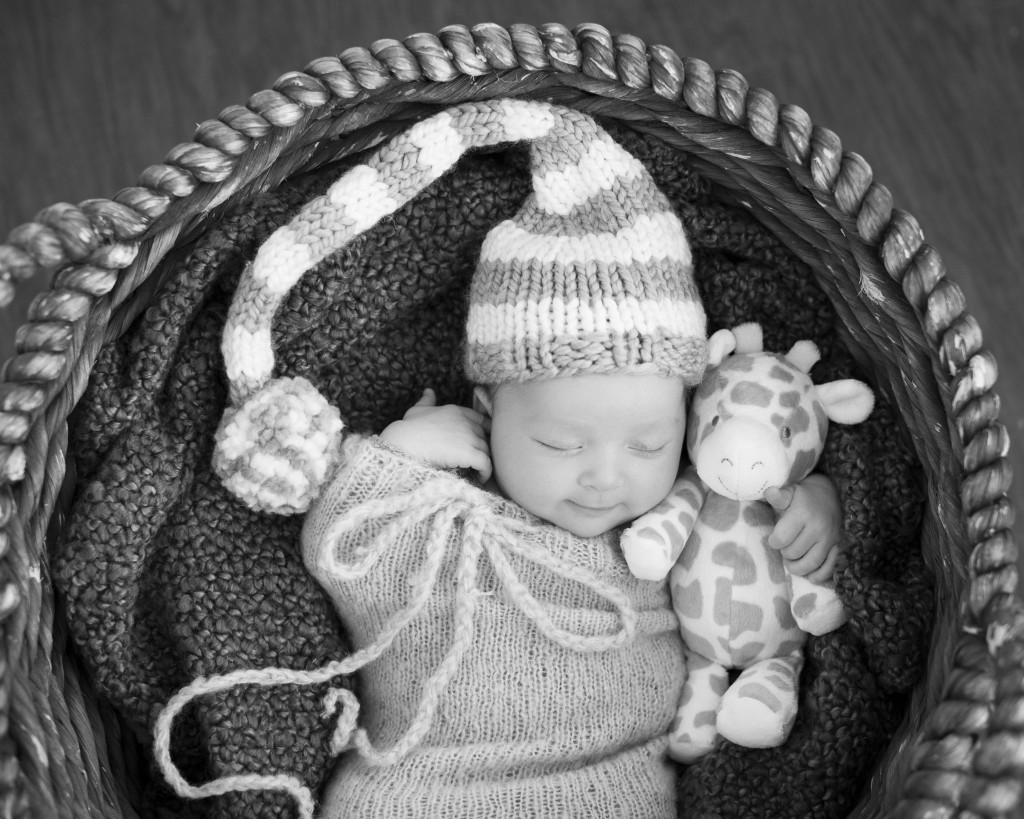 Weston newborn photography